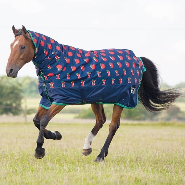 SALE Bridleway Ontario Medium Weight Full Neck Combo Horse Turnout Rug 5ft6
