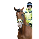 EQUISAFETY POLITE NOSE BAND EQUINE HORSE HORSE SAFETY WEAR